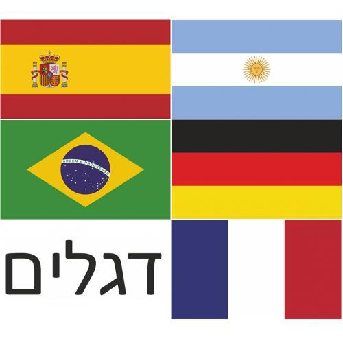 דגלי מדינות בגודל 30/40