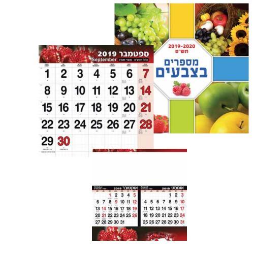 """לוח שנה קיר, ספירלי, מהודר מספרים בצבעים - לפי חודשים (33\33 ס""""ם)"""
