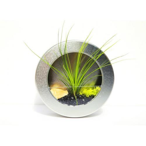 """גלגל כסוף 17.5 ס""""מ תלייה/מעמד שולחני+אבני קריסטל+צמח אוויר+קונכיה טבעית+מוס טבעי צבעוני"""